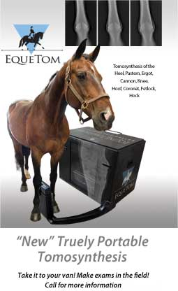 Equetom Portable Tomosynthesis