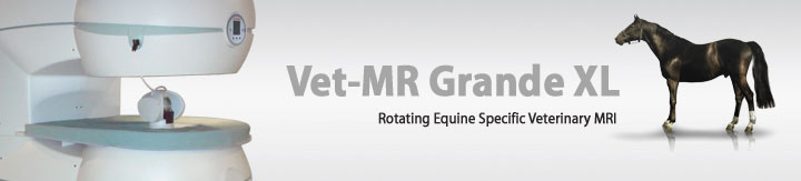 Vet-MR Grande XL, World's first equine specific rotating veterinary MRI